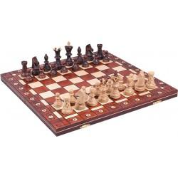 Chess Ambassador