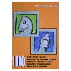 """József Pintér \\\""""Minor Piece Endings\\\"""""""