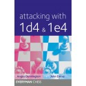 Attacking with 1d4 & 1e4 (K-5258)