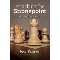 Attacking the Strongpoint - Igor Zaitsev (K-6013)