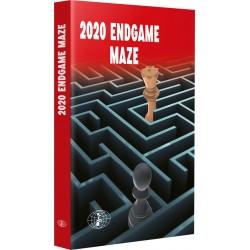2020 Endgame Maze (K-6049)