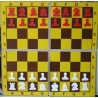 Magnetic chess demonstration folding on 4