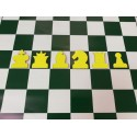 Yellow magnetic chess pieces for demonstration chessboard