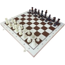 Chess for SCHOOLS No 4 (S-190)
