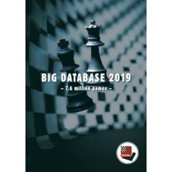 Big Database 2019 (P-0045)